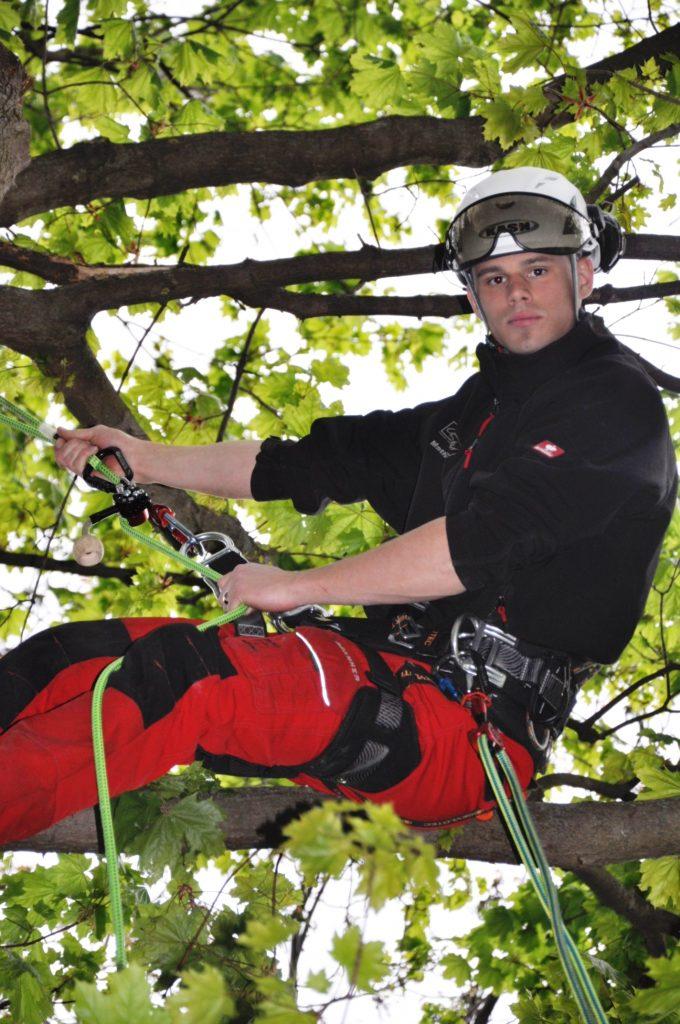 Mathias Göth | Zertifizierter Baumpfleger